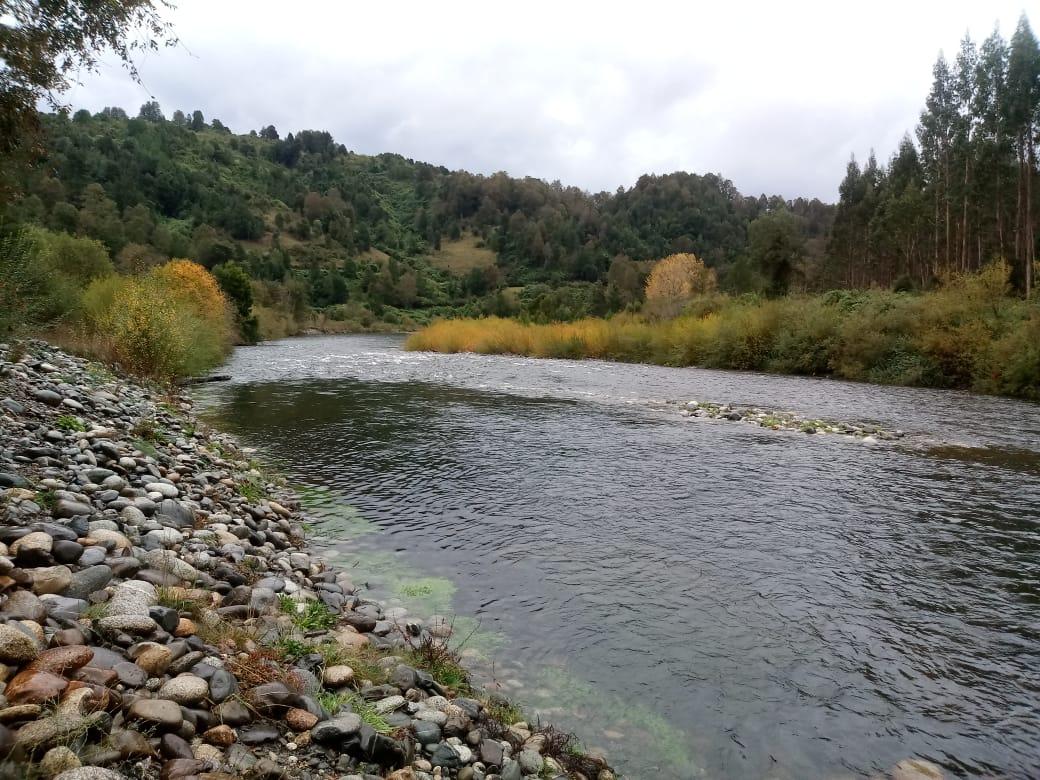 Terreno 4ha orilla Rio Quinchilca